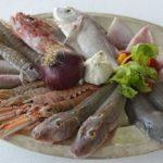 BrodettoFest di Fano _ I pesci della ricetta di Brodetto alla fanese